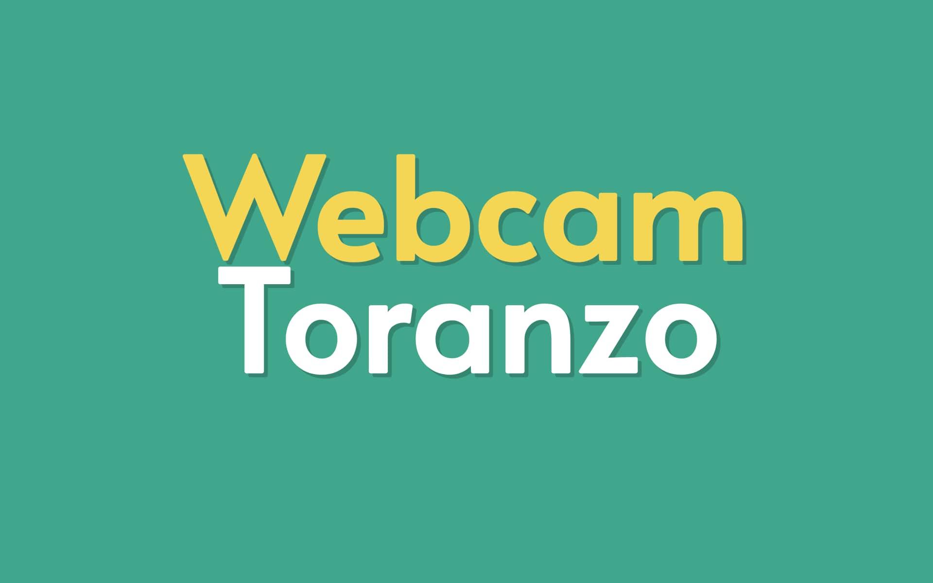 logo_webcam_toranzo_completo